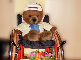 Ein Teddybär sitzt im Rollstuhl.