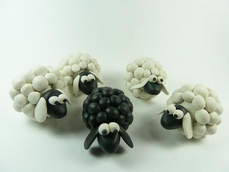 Schwarzes Schaf in weißer Herde