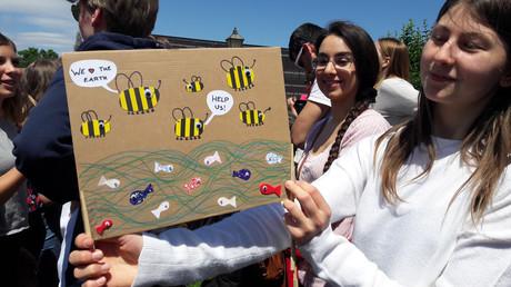 Eine junge Frau bei einer Fridays For Future - Demonstration. Ihr Schild warnt vor dem Aussterben der Bienen.